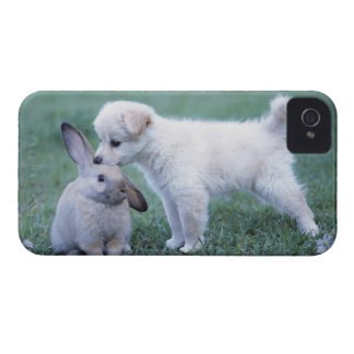 Puppy and Lop Ear Rabbit on lawn Case-Mate iPhone 4 Case