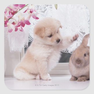 Puppy and Lop Ear Rabbit Square Sticker