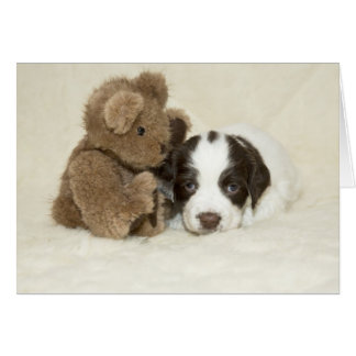 Puppy and Teddy Card