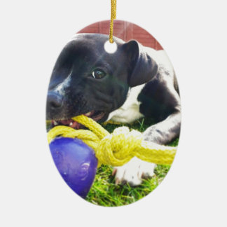 Puppy at Play Ceramic Oval Ornament
