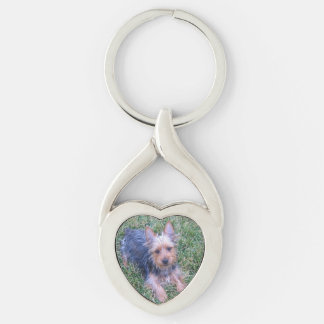 puppy australian silky terrier laying Silver-Colored twisted heart keychain