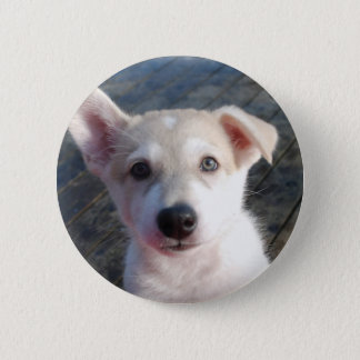 Puppy badge 2 inch round button