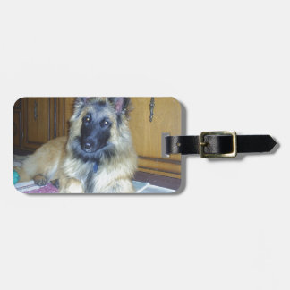puppy Belgian_Tervueren.png Luggage Tag