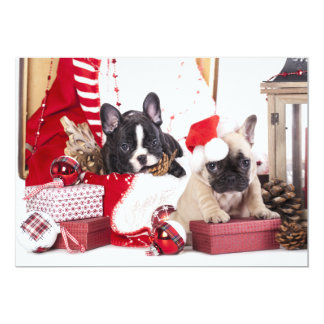 Puppy Christmas French Bulldog Card