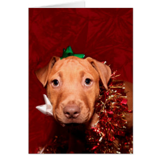 Puppy Christmas help Cards