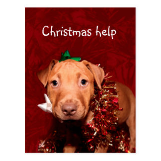 Puppy Christmas help Post Cards