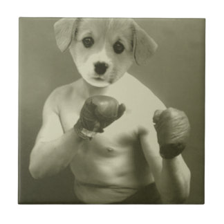 Puppy dog Boxer Tile