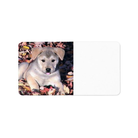 Puppy Dog In Fall Leaves Label