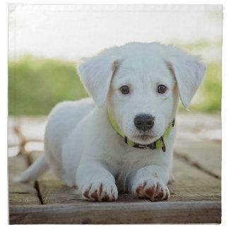 Puppy Dog Napkin