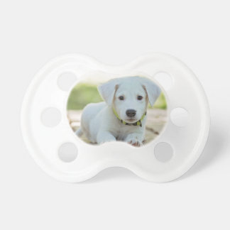 Puppy Dog Pacifier