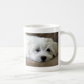 Puppy Eyes Basic White Mug