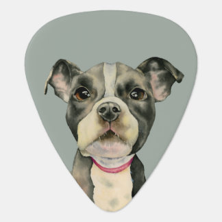 """Puppy Eyes"" Pit Bull Dog Watercolor Painting Guitar Pick"