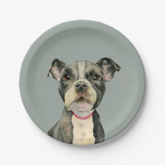 """""""Puppy Eyes"""" Pit Bull Dog Watercolor Painting Paper Plate"""