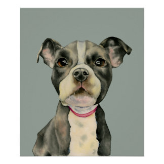 """Puppy Eyes"" Pit Bull Dog Watercolor Painting Poster"