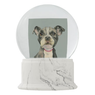 """""""Puppy Eyes"""" Pit Bull Dog Watercolor Painting Snow Globe"""