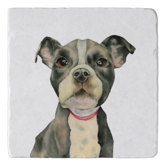 """""""Puppy Eyes"""" Pit Bull Dog Watercolor Painting Trivet"""