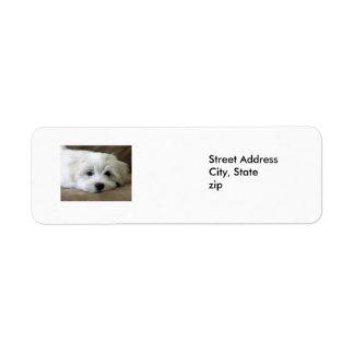 Puppy Eyes Return Address Label