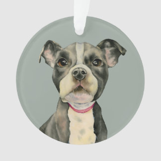 Puppy Eyes Watercolor Painting Ornament