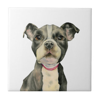 Puppy Eyes Watercolor Painting Tile