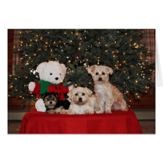 Puppy Family Card