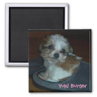 Puppy in slipper photograph on a magnet. square magnet