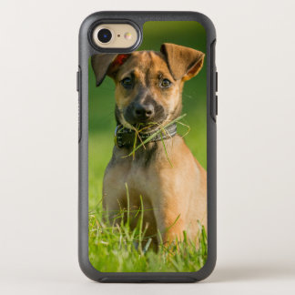 Puppy In The Grass OtterBox Symmetry iPhone 8/7 Case