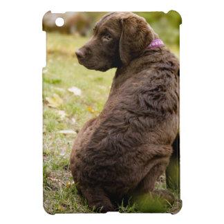 puppy iPad mini cases