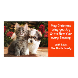 Puppy & Kitten Holiday Card Photo Greeting Card