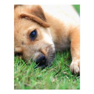 puppy letterhead