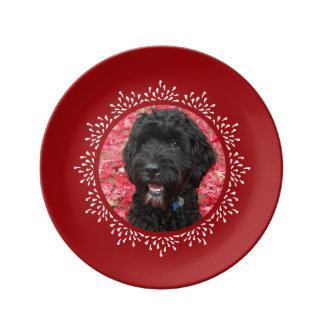 Puppy Love Teardrop Frame Plate