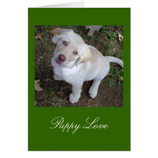Puppy Love Yellow Labrador Retriever Card