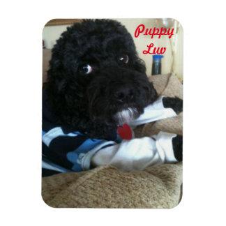 Puppy Luv Magnet