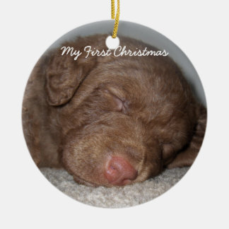 Puppy My First Christmas Photo Ornaments