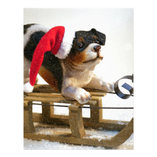 Puppy on a Sled Letterhead
