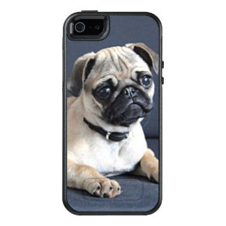 Puppy On Lounging Couch OtterBox iPhone 5/5s/SE Case
