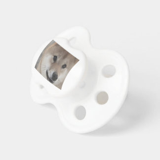 puppy pacifiers