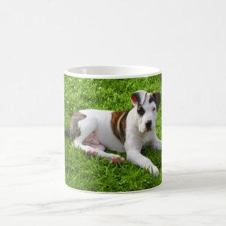 Puppy Pit Bull T-Bone Coffee Mug