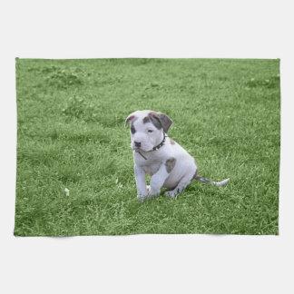 Puppy Pit Bull T-Bone Kitchen Towel