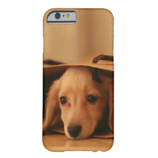 Puppy Playing in Grocery Bag Barely There iPhone 6 Case