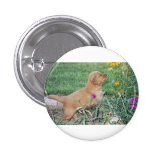 Puppy playing with flowers 1 inch round button