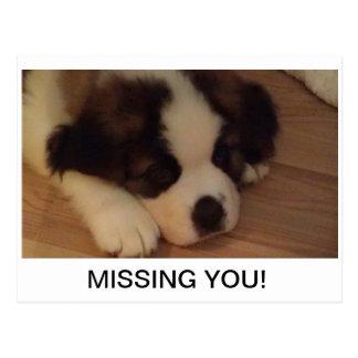Puppy Postcard