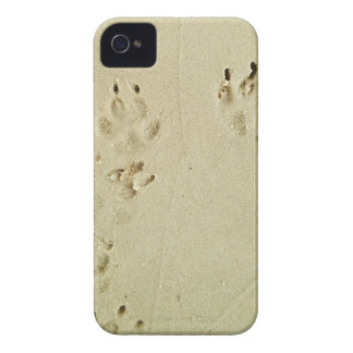 Puppy prints in the sand iPhone 4 cover