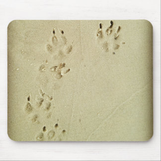 Puppy prints in the sand mouse pad