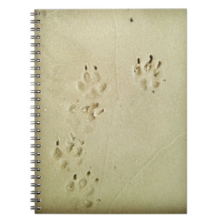 Puppy prints in the sand notebook