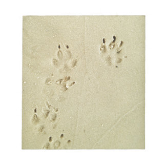 Puppy prints in the sand notepad