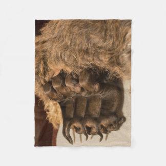 puppy`s fleece blanket