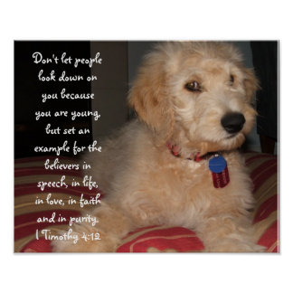 Puppy Sam Poster