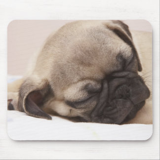 Puppy Soundly Sleeping Mouse Pad
