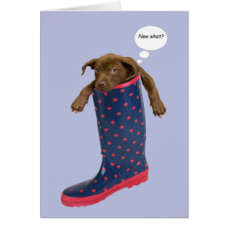 Puppy Stuck in Rain Boot by Focus for a Cause Greeting Card