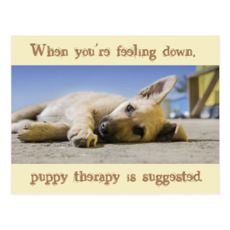 Puppy Therapy Dog Postcard
